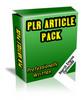 53 Web Traffic And SEO PLR Articles (RAR File)